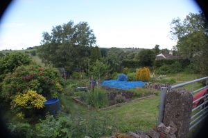 Chelmorton Allotments